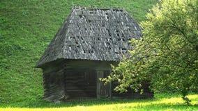 Hölzernes rustikales kleines Haus hinter einem Baum in Moieciu, Rumänien stock footage