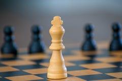Hölzernes Schachbrett und -Schachfiguren stockbild