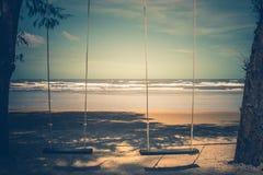 Hölzernes Schwingen, das vom Baum auf dem Strand mit Meerblickansichthintergrund hängt stockfotografie