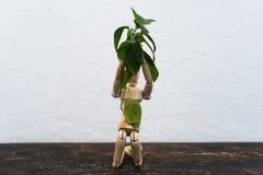 Hölzernes Spielzeug im Bild eines Mannes auf einem hellen Hintergrund in den Händen mit einer Grünpflanze Lizenzfreie Stockbilder