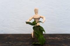 Hölzernes Spielzeug im Bild eines Mannes auf einem hellen Hintergrund in den Händen mit einer Grünpflanze Stockfoto
