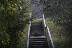 Hölzernes Treppenhaus während des Regensturms Lizenzfreie Stockfotografie