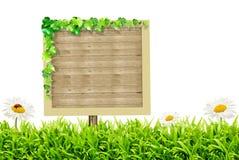 Hölzernes unbelegtes Zeichen und grünes Gras mit Gänseblümchen Stockfoto