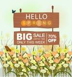 Hölzernes Verkaufszeichen mit hallo Frühlingsbeschriftung, mit Blumen und Schmetterlingen stock abbildung