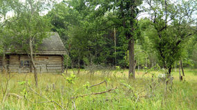 Hölzernes, verlassenes Haus Stockfoto