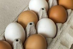 Hönaägg i öppen pappägglåda på bakgrund för utrymme för köksbordljuskopia Sund organisk mat och att banta begrepp arkivfoto