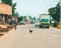 Höna Jinja Uganda källa av Nile River royaltyfri bild