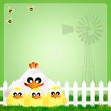 Höna och fågelungar Arkivbild