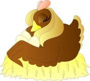 Höna på ett rede av hö med ägg som ta sig en tupplur stock illustrationer
