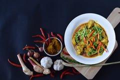 höna stekt kryddigt Fotografering för Bildbyråer