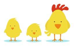 Hönamoder med små fågelungar Royaltyfri Fotografi