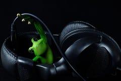 Hörlurar för musik Arkivbild