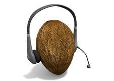 Hörlurar på kokosnöten Arkivfoto