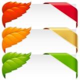 Hörnband och fallen leafvektorset Arkivfoton