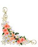 hörndesignen blommar tropiskt royaltyfri illustrationer