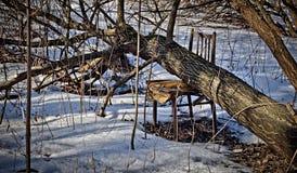 Hörnet av wintergardenen, som fylls upp med snö, kastas av folk Fotografering för Bildbyråer