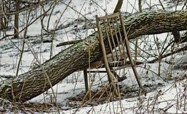 Hörnet av wintergardenen, som fylls upp med snö, kastas av folk Royaltyfri Fotografi