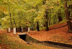 höst Central Park Royaltyfria Foton