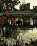 höst Central Park Arkivbild