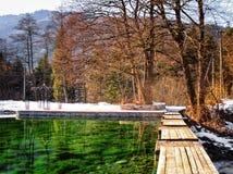 Höst- eller vinterlandskap med sjön Royaltyfri Bild