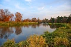 Höst, flod, gräs och träd i nedgångfärger arkivbilder