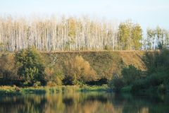 Höst flod, höstskog, orange skog, landskap royaltyfri foto