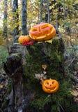 Höst halloween arkivfoton