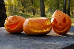 Höst halloween royaltyfria bilder