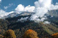 Höst i bergen, alpina ängar royaltyfri fotografi
