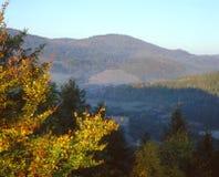 Höst i Carpathian berg royaltyfri bild