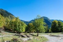 Höst i de Kaukasus bergen, Abchazien Royaltyfri Fotografi