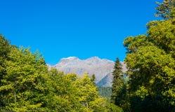 Höst i de Kaukasus bergen, Abchazien Royaltyfria Bilder