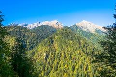 Höst i de Kaukasus bergen, Abchazien Arkivfoto