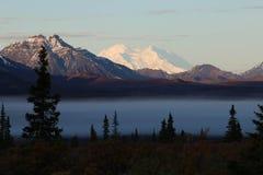 Höst i den Denali nationalparken, Alaska arkivbilder