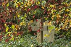 Höst i den gamla kyrkogården på den Southampton allmänningen arkivbild