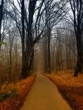 Höst i den Ojcow nationalparken, Polen Royaltyfria Bilder