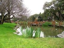 Höst i en japansk trädgård Royaltyfri Bild