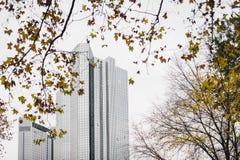 Höst i Frankfurt Arkivbilder