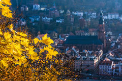 Höst i Heidelberg Royaltyfri Foto
