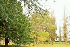 Höst i parkera Parc de Scherdermael royaltyfri bild