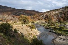 Höst i Patagonia del fuego tierra Arkivfoto