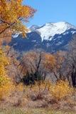 Höst i Rockiesna royaltyfria bilder