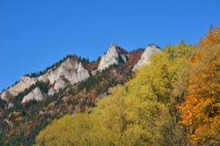 höst i skog- och för berg tre kronor Arkivfoto