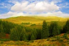 Höst i skotsk Skotska högländerna Arkivfoto