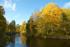 Höst i Sverige, när solen är glänsande arkivfoto