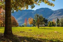 Höst i Sydafrika Arkivbild