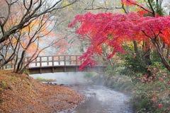 Höst i Yufuin, Japan Arkivbild
