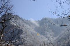 Höst Kallt väder Arkivfoton