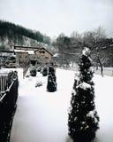 Höst Kallt väder Arkivbilder
