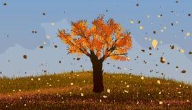 Höst Lövfällande träd med orange sidor Royaltyfri Foto